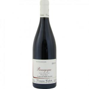 00672 Bourgogne Rouge 2019 Cuvée de Noble Souche Pinot Noir Domaine Collotte