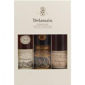 09006 Cognac Delamain 3x20cl til Magento